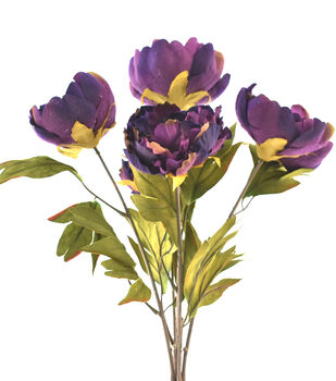 Blooming Autumn Peony Bush-Dark Purple & Green