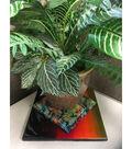 Eclectic Inc. Famowood 16 oz. Glaze Coat High Gloss Craft Resin