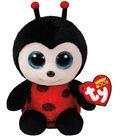 TY Beanie Boo Lady Bug-Izzy
