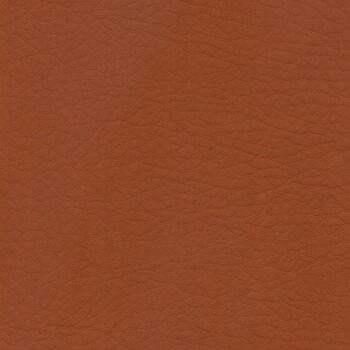 Upholstery Vinyl  Cinammon Whisper