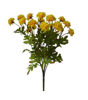Blooming Autumn 20'' Gomphrena Bush-Yellow