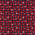Patriotic Cotton Fabric-Red Plaid With Stars