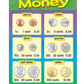 Money Learning Chart 17\u0022x22\u0022 6pk