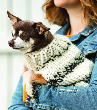 How To Make A Chunky Knit Small Dog Sweater