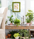 Bloom Room Moss Covered Frame