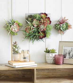 How To Make Succulent Wall Frames