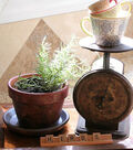 Dyed Terra Cotta Pots