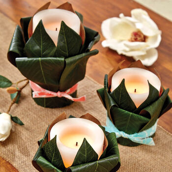 Magnolia Leaves for Flameless Candle