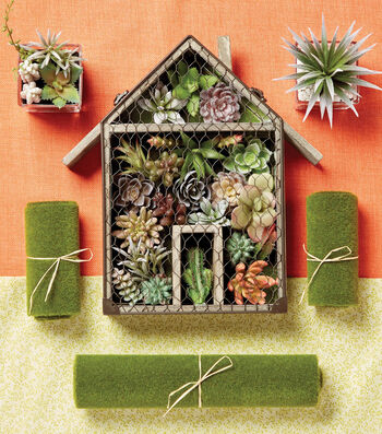 How to Make a Succulent Wall Container Arrangement