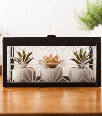 How To Make An Etched Succulent Box
