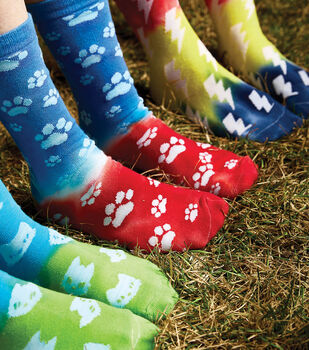 How To Make a Tulip One-Step Tie-Dye with Crazy Socks