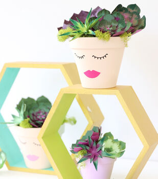 How To Make A Face Succulent Planter
