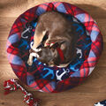 How To Make A Patriotic Dog Bed, Pillow, And Toy