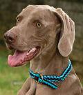 Adjustable Dog Collar and Leash