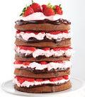 Naked Chocolate Covered Strawberry Cake