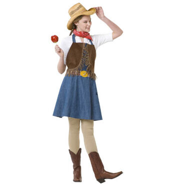 Cowgirl Apron Costume
