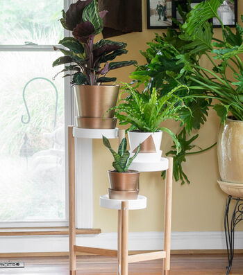 Metallic-Dipped Plant Stand and Coordinating Pots