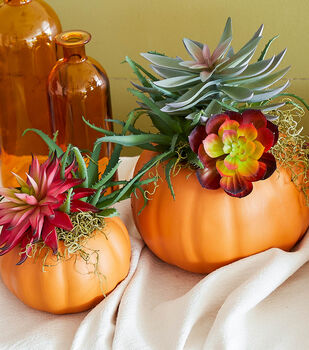 How To Make a Fall Succulent and Moss Pumpkins
