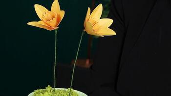 Lia Griffith Paper Daffodil Video