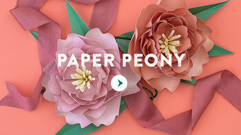 Lia Griffith Paper Peony Flower Video