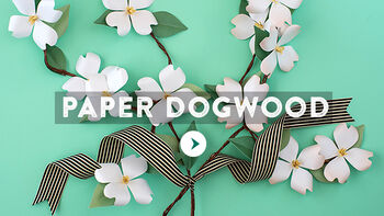 Lia Griffith Paper Dogwood Flower Video