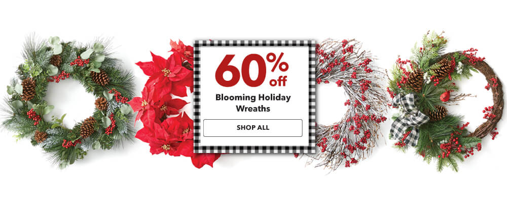 50% off Blooming Holiday Wreaths. Shop Now.