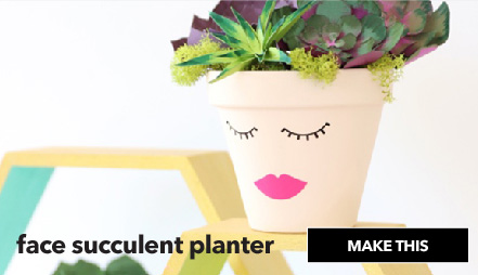 How To Make A Face Succulent Planter. Make This.