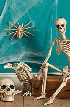 The Boneyard.
