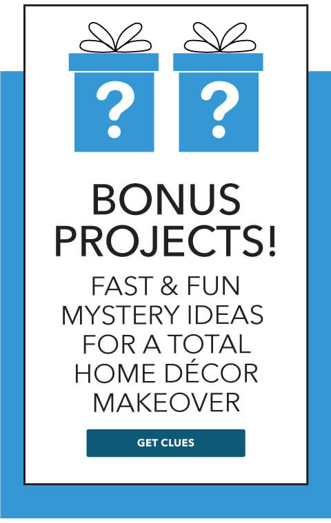 Bonus project! Fast and fun mystery idea for a total home decor makeover.