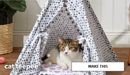 How To Make a Cat Teepee. Make This.