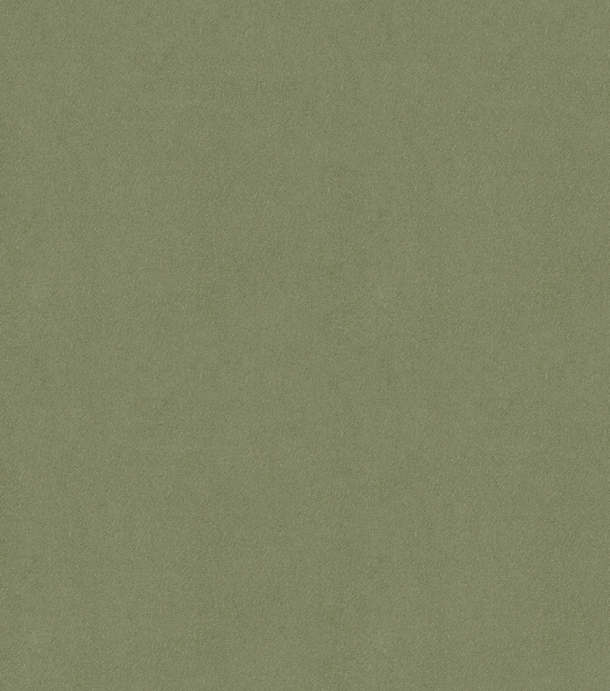 Signature Series Multi-Purpose Faux Suede Decor Fabric 58\u0022-Sage