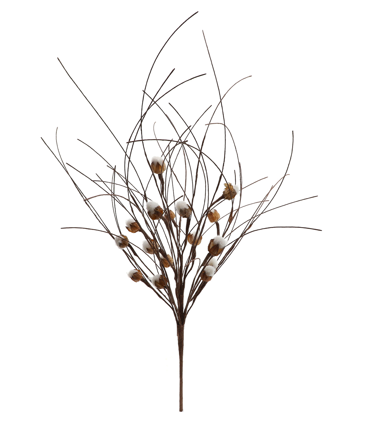 Blooming Autumn 26\u0027\u0027 Cotton Pod Bush-Beige & Brown