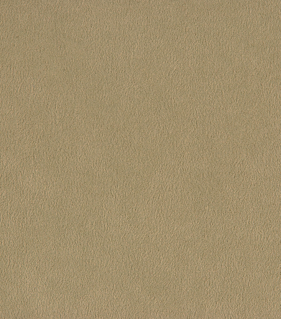 Home Decor 8\u0022x8\u0022 Fabric Swatch-Crypton Suede-Lichen