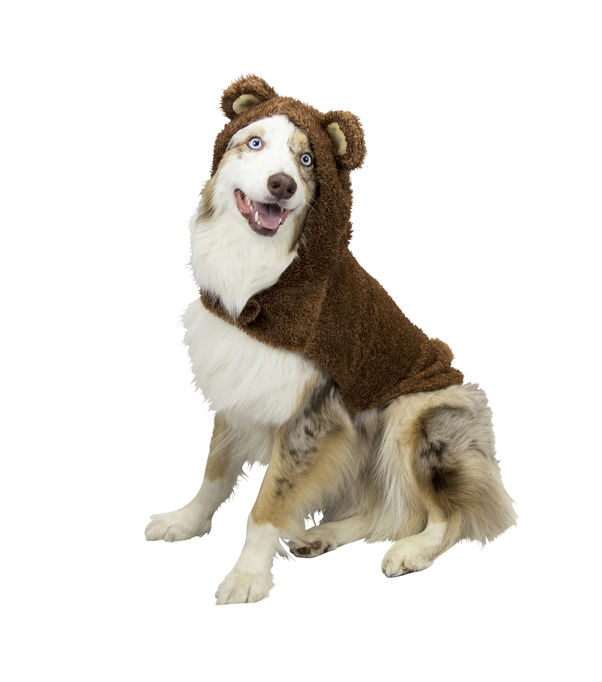 Maker\u0027s Halloween Pet Costume-Bear X-Large