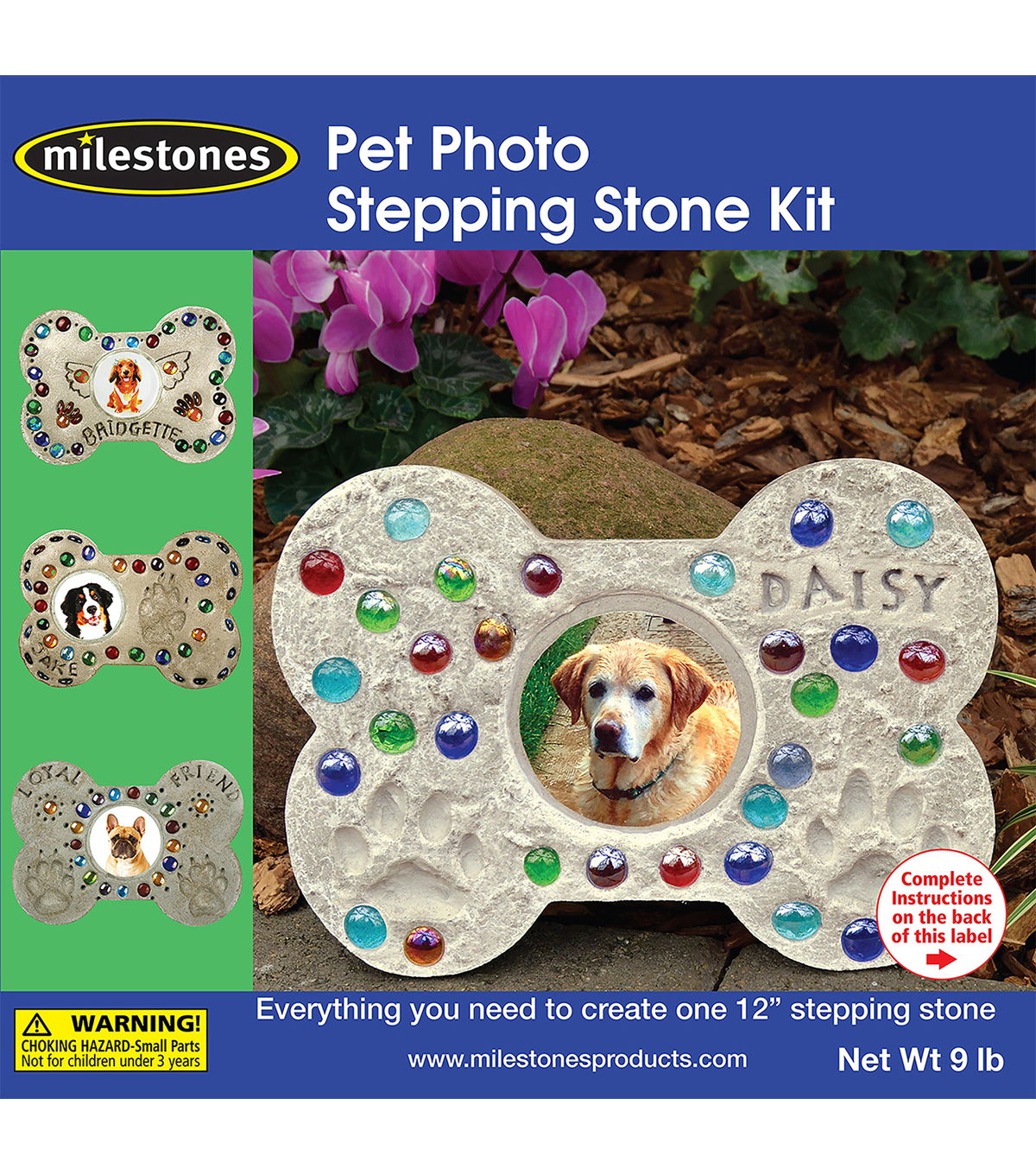 Mosaic Stepping Stone Kit-Pet Photo