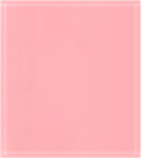 Wrights Maxi Piping 1/2\u0022 2-1/2 Yards, Pink