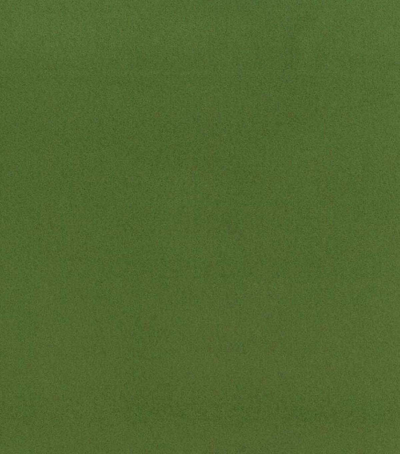 Blizzard Fleece Fabric -Solids, Piquant Green
