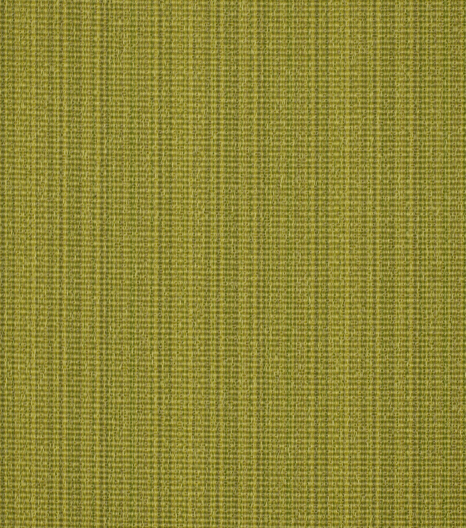 Home Decor 8\u0022x8\u0022 Fabric Swatch-Signature Series Run Along Kiwi