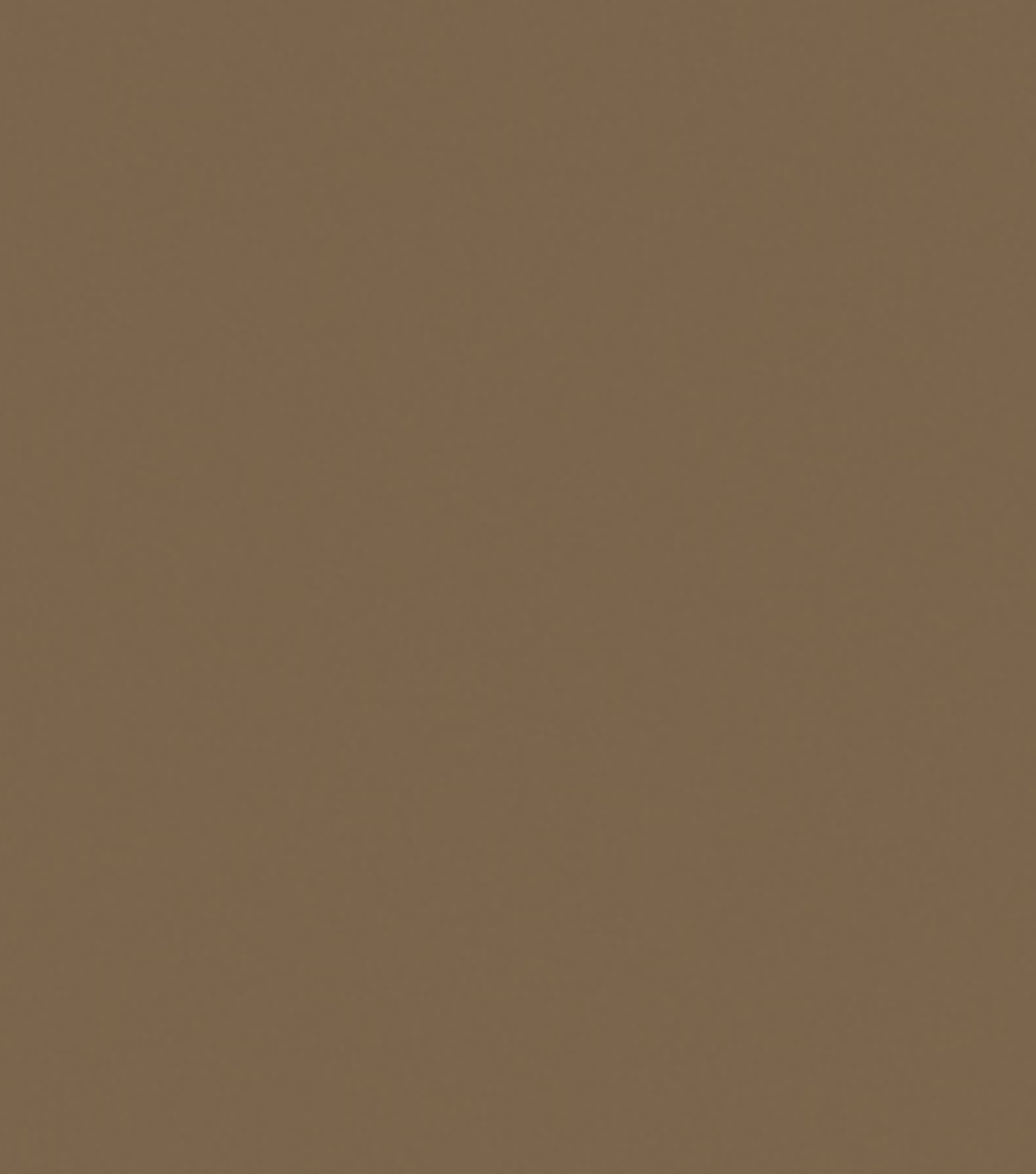 Delta Ceramcoat Acrylic Paint 2 oz, Walnut