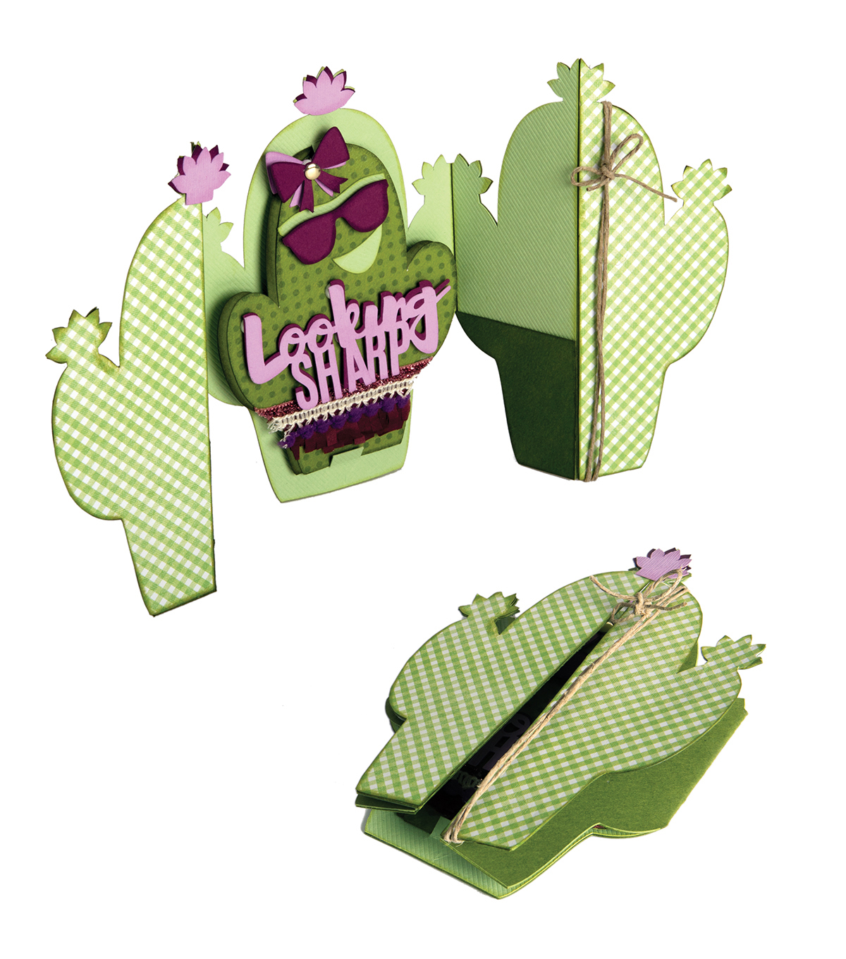 Sizzix Thinlits Jen Long 7 Pack Die-Cactus Fold-A-Long Card