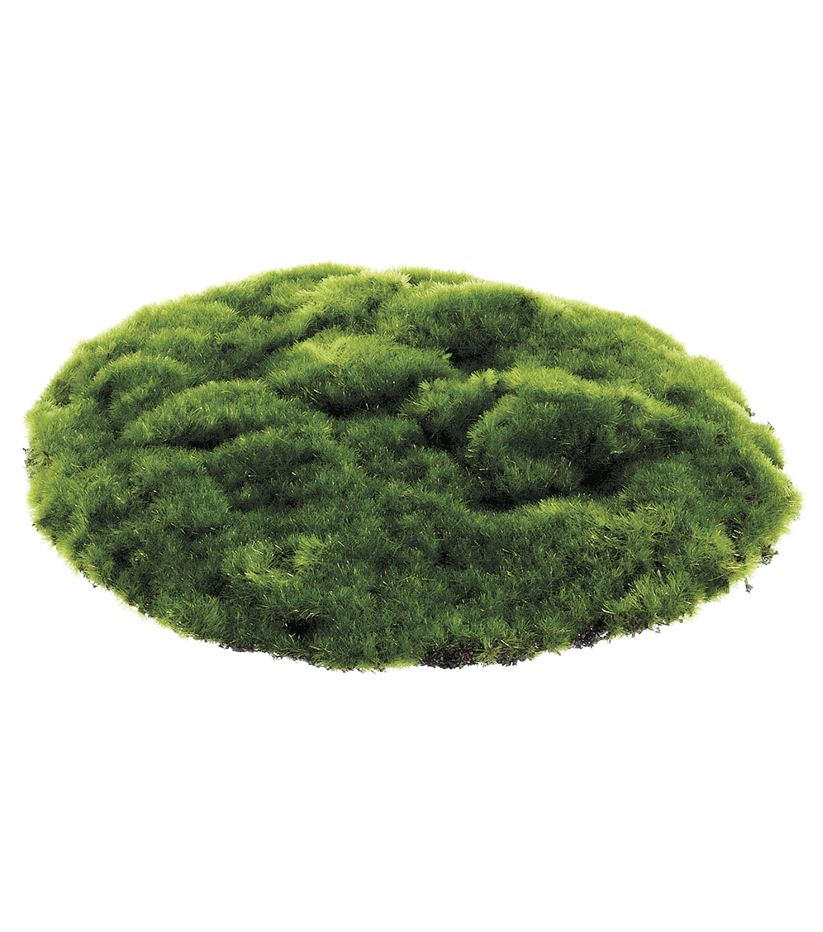 Bloom Room Round Moss Sheet