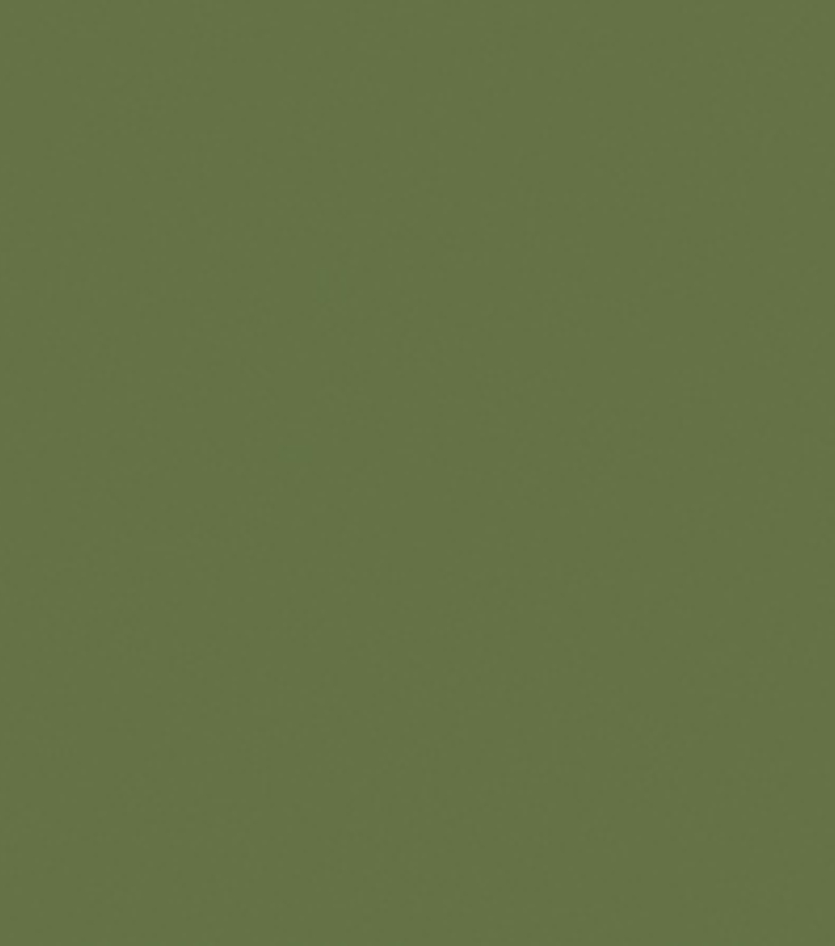 Delta Ceramcoat Acrylic Paint 2 oz, Dark Forest Green