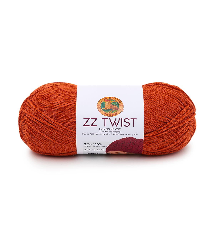 Lion Brand ZZ Twist Yarn   JOANN