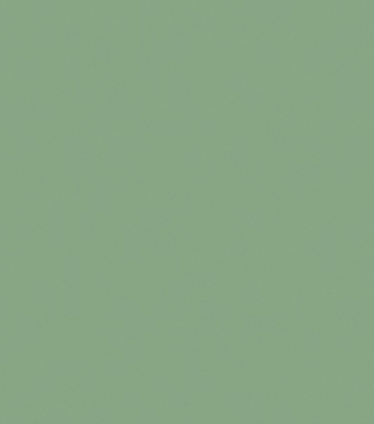 Delta Ceramcoat Acrylic Paint 2 oz, Wedgewood Green