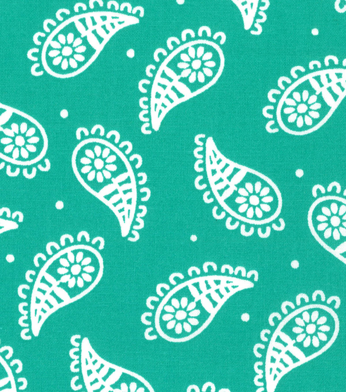 Quilter\u0027s Showcase Fabric 44\u0027\u0027-Pool Green Paisley