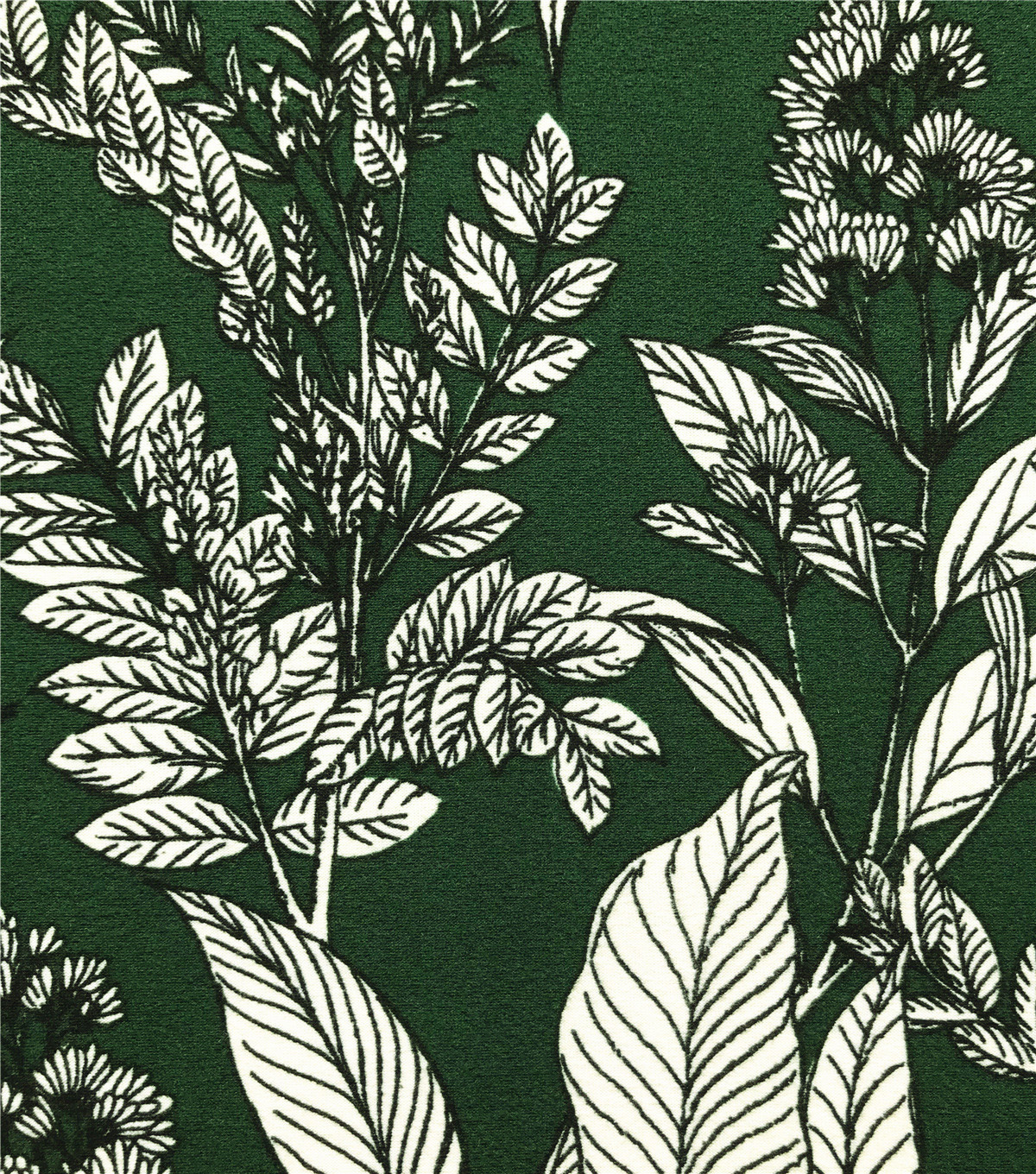 Knit Prints Double Brushed Fabric-Dark Green Leaf