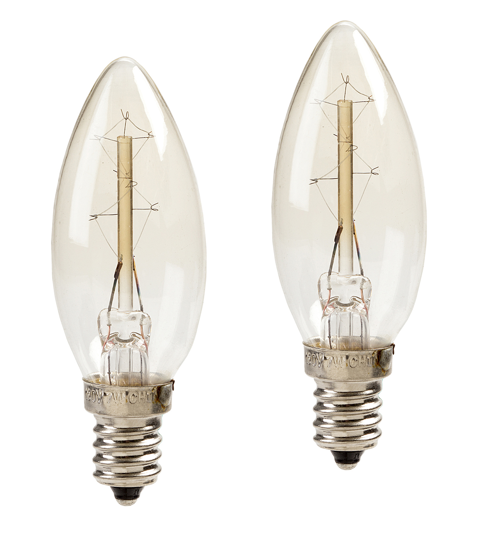 Hudson 43 Edison Style 2 Pk Candelabra Bulbs