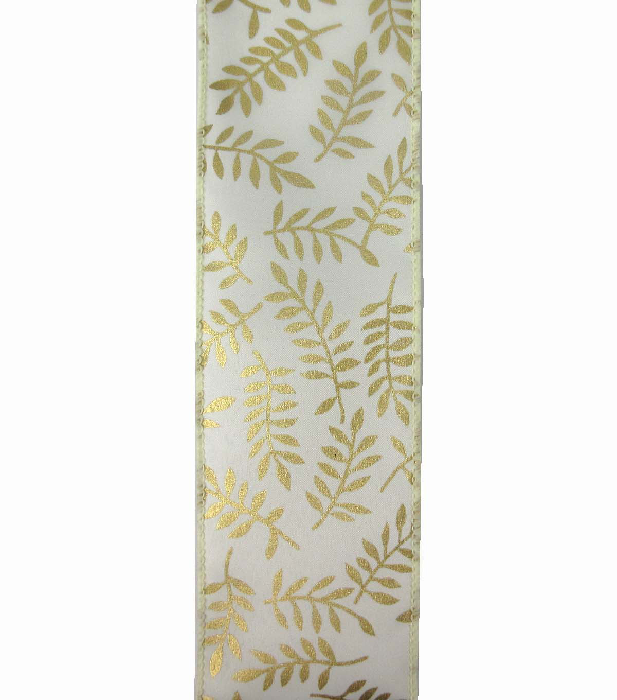 Save the Date 2.5\u0022 x 15ft Ribbon-Gold Fern On Ivory