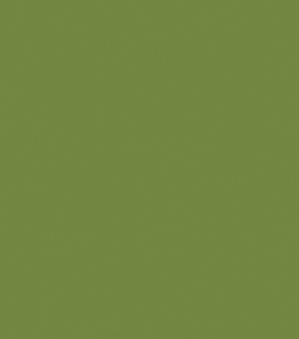 Delta Ceramcoat Acrylic Paint 2 oz, Seminole Green