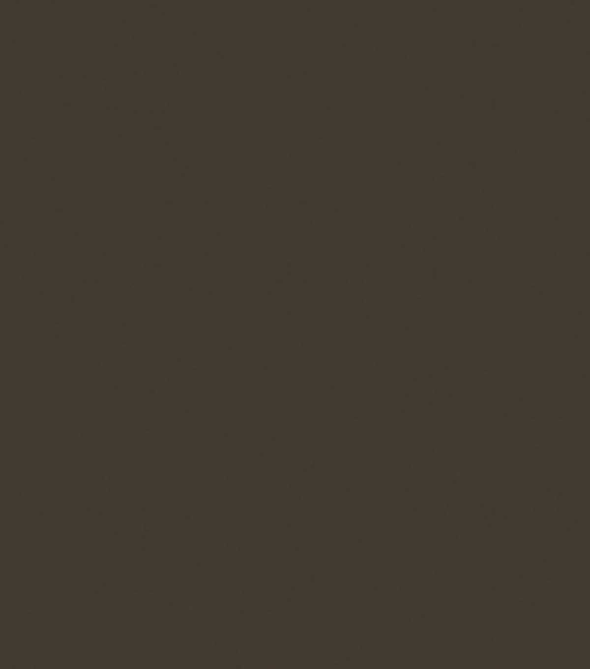 Delta Ceramcoat Acrylic Paint 2 oz, Dark Burnt Umber